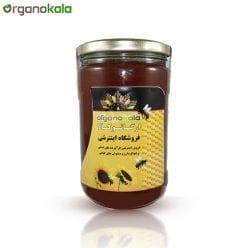 عسل آویشن ارگانوکالا - 900 گرم